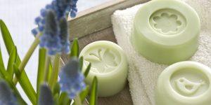 Ideen mit Seife: Kleine Seifen für Frühling und Sommer | Mit Schmetterling, Blüte und Vogel in zartem Grün
